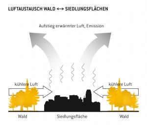 Luftaustausch Wald <-> Siedlungsflächen